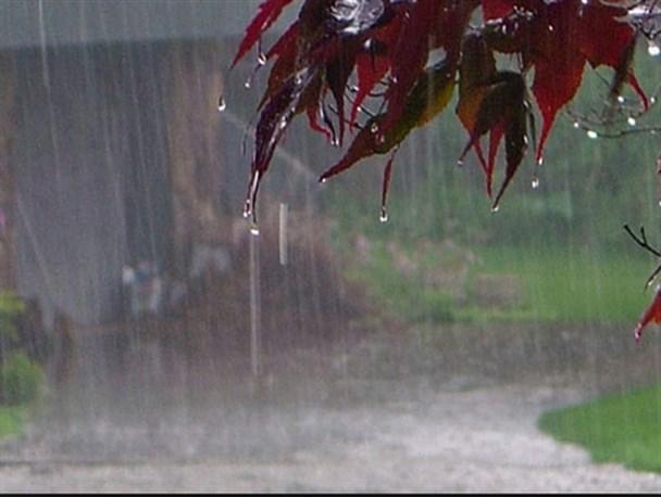 رئیس مرکز خشکسالی در گفت وگو با خبرنگاران: رشد 101 درصدی بارش نسبت به سال گذشته، تمام استان ها بیش از نرمال بارش دریافت کردند