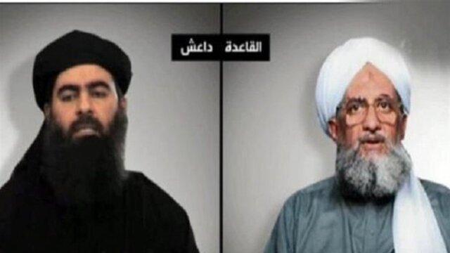 هشدار درباره پیامد رقابت القاعده و داعش در یمن