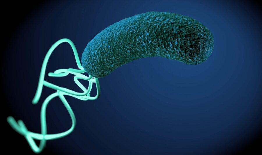 نکته بهداشتی: پیشگیری از وبا