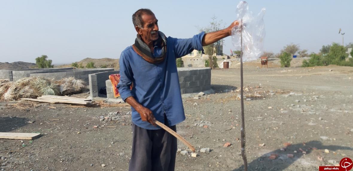 حمله مار سمی یک متری به مرد منوجانی
