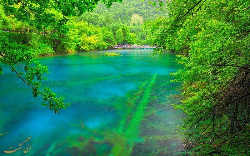 پارک ملی دره جیوژای، اولین پارک ملی چین