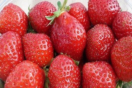 فواید حفاظتی مصرف توت و سیب و چای در برابر آلزایمر