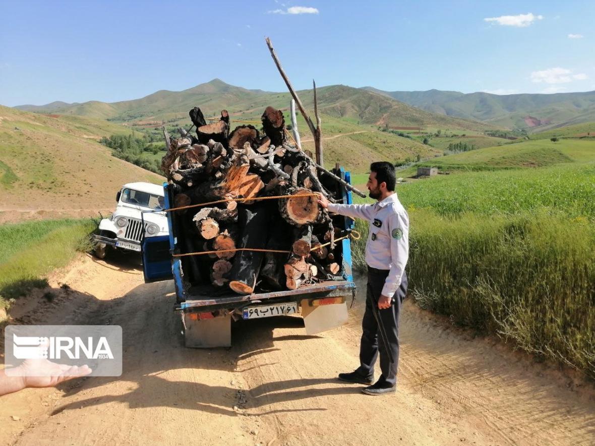 خبرنگاران پنج تن چوب قاچاق در سقز کشف شد